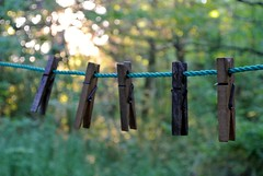 Clothes Line at Camp
