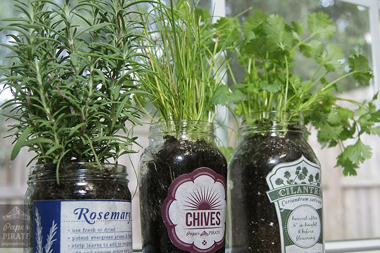 Herb Garden Jars - Final