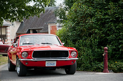 Ford Mustang [Explored]