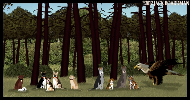 The Dog-People found Ringo and some unexpected others ©2012 Jack Boardman