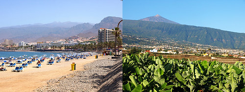 Scenery in South and North Tenerife