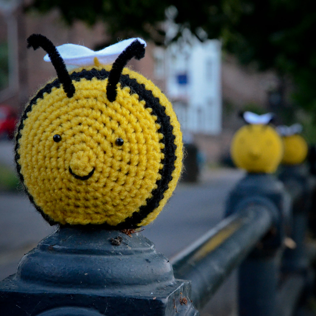My favourite bee