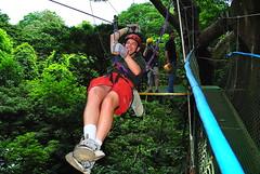 Jak on a Canopy Zipline