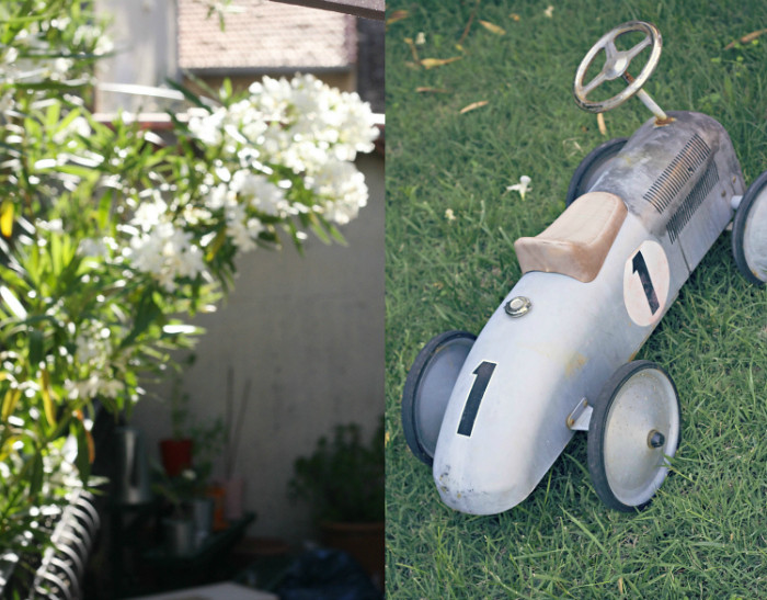 dip-flowerbush-littlecar-1-700p