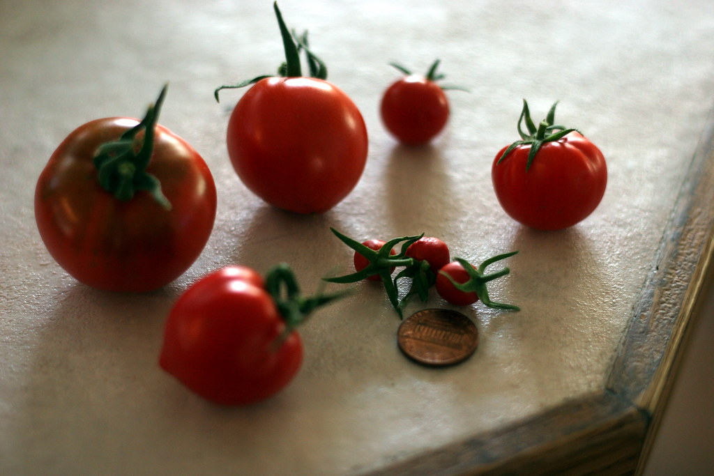 tiniest tomatoes