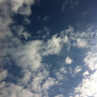 久々にすっきり晴れ #sky