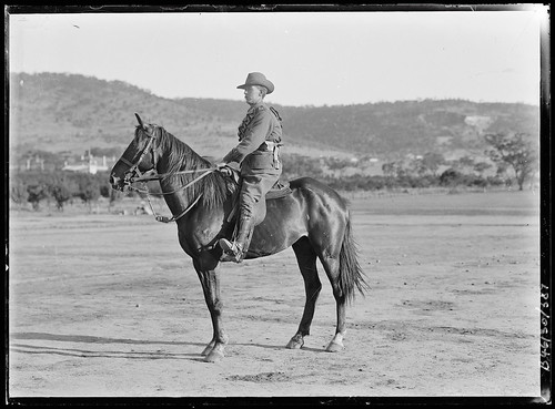 B46130_387 Mounted soldier
