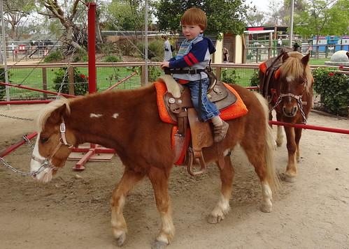 Cowboy Archie