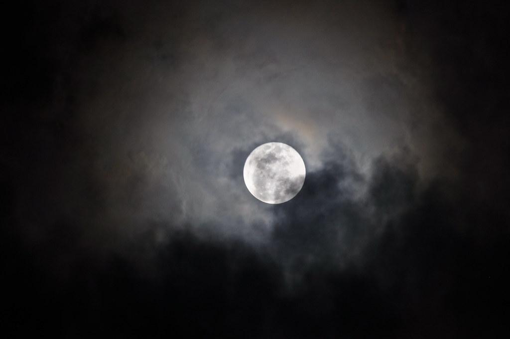 Moon 月亮 ...