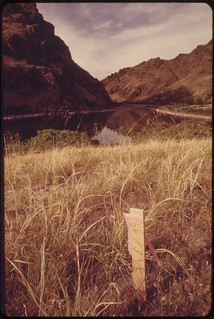 Survey stakes indicate planned subdivision for this privately owned holding in Hells Canyon..., 05/1973