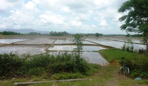 V-Route Pleiku-Quy Nhon (51)
