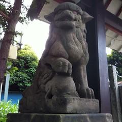 狛犬探訪 子安八幡 阿吽とも子連れ