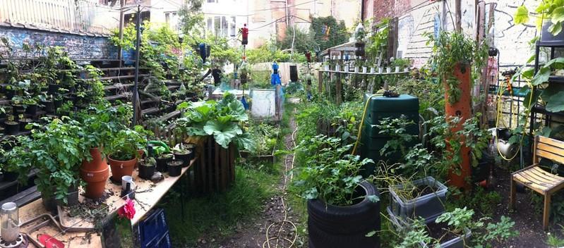 nadine's garden wasteland