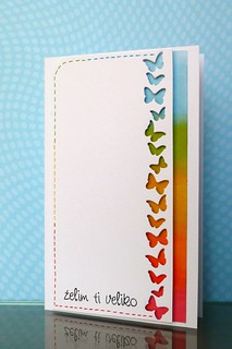 Rainbow of butterflies