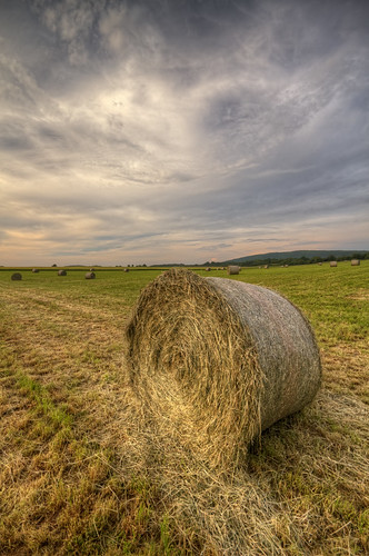 canon eos 7d sigma 1020mm hdr photomatix nature paysage landscape france franchecomté champs field prairie meadow campagne sky nuages clouds foin hay recolte harvest wideangle philippesaire photo photography ciel