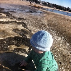 Having fun in the rock pools at St Heliers beach #max