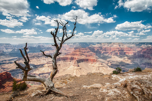 The Grand Canyon II