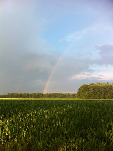 Finally: a rainbow!