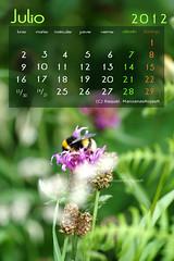 Calendario julio 2012