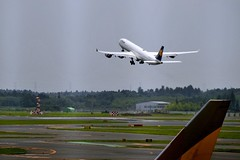 boeing 777(0.0), narrow-body aircraft(0.0), landing(0.0), boeing 767(0.0), air force(0.0), airline(1.0), aviation(1.0), airliner(1.0), airplane(1.0), wing(1.0), vehicle(1.0), air travel(1.0), wide-body aircraft(1.0), airbus a330(1.0), takeoff(1.0), jet aircraft(1.0), flight(1.0), aircraft engine(1.0),