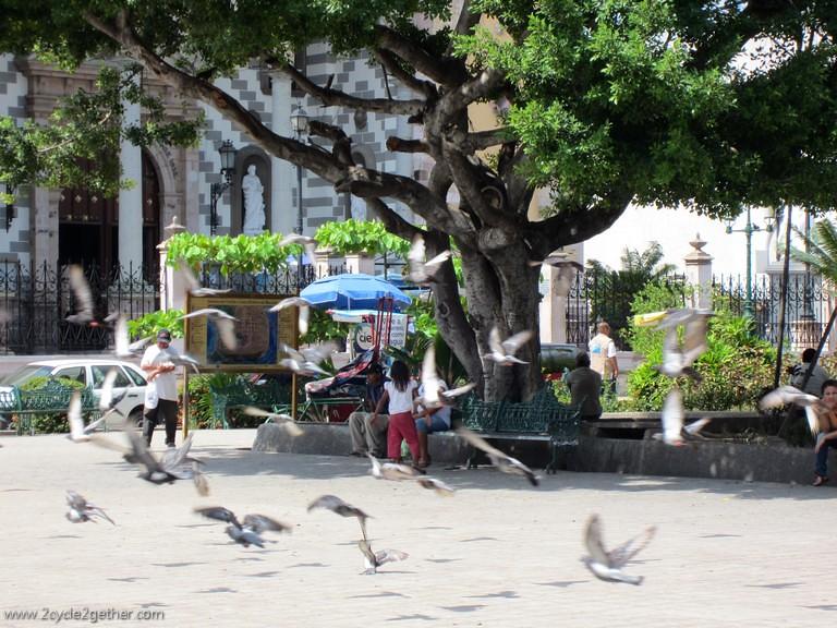 Scenes from Mazatlan Centro