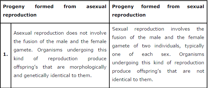 Sexual reproduction biology notes