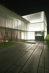 Steven Holl - THE NELSON-ATKINS MUSEUM OF ART