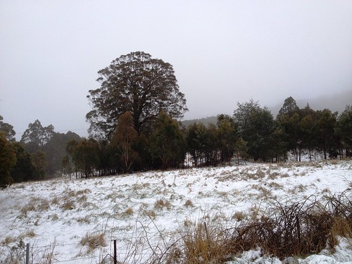 Snow at Yetholme