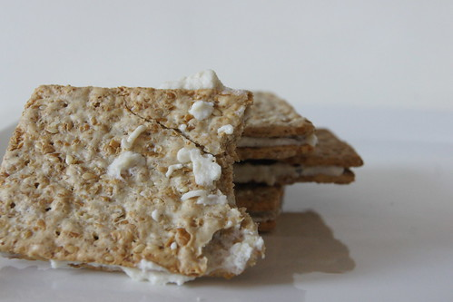 Healthy Snack Ideas - Cottage Cheese and Crackers