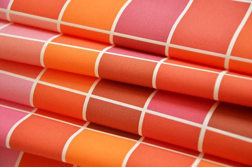 Rosa Rot Orange Pink Red Orange