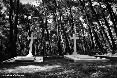 trees blackandwhite forest graves greece attica parnitha ελλάδα δέντρα blackwhitephotos πάρνηθα αττική δάσοσ τάφοι μαυρόασπρεσ πρώηνβασιλικόκτήματατοιου theformerroyalestateintatoi