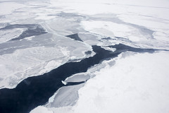 winter, glacial landform, melting, ice cap, polar ice cap, ice, glacier, sea ice, freezing,