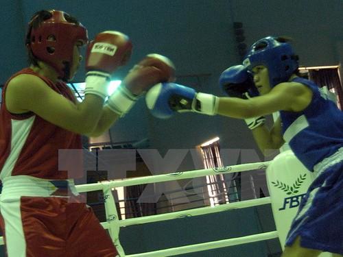 Khai mạc Giải Boxing Đồng bằng sông Cửu Long mở rộng lần thứ 1