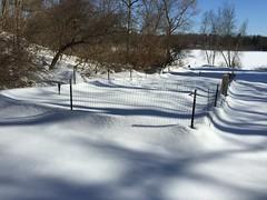 snowshovelling garden IMG_0388