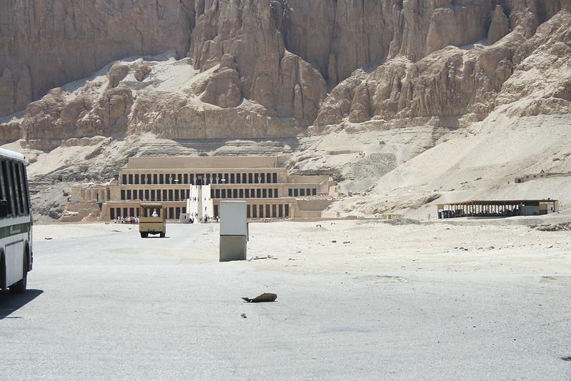 Egypt_2008_7