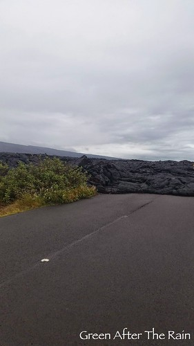 140902e_VolcanoChainOfCraters5358