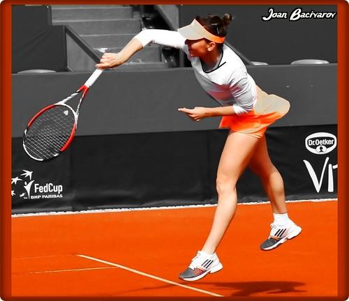 Simona Halep - the 25th WTA World leader