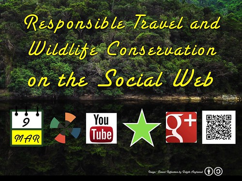Monday Hangout: Responsible Travel + Wildlife Conservation @knysnatourism @ThisTourismWeek @GvCyclotis @martinhatchuel