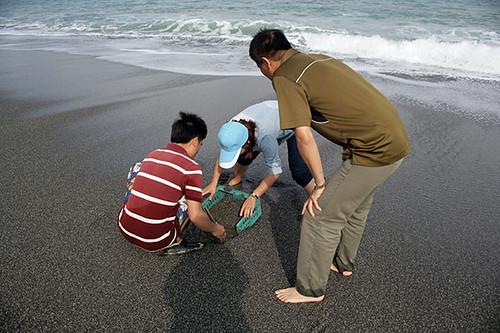 把簍子插進灘地捕捉浪花蟹。圖片來源:朱雲瑋