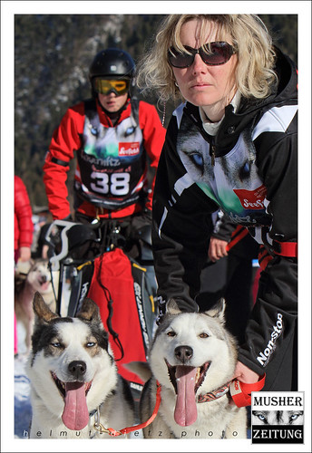 WSA WC 2015, 2-Dogs-Juniors: Hugo Verdy with his mother Virginie as dog handler