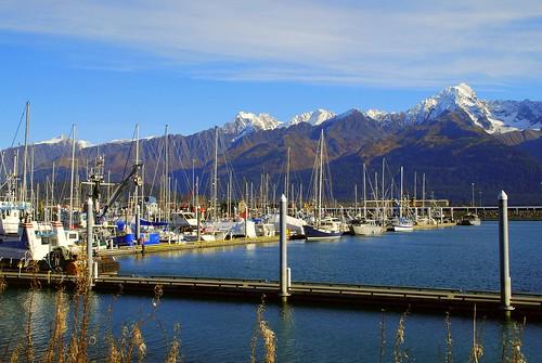 Small Boat Habour Seward Alaska