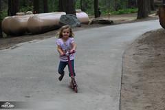 Homeschool Family Camp Spring '16-18