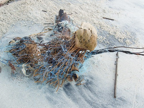 201202110233_fishing-net