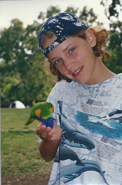 chiarotta pappagallo