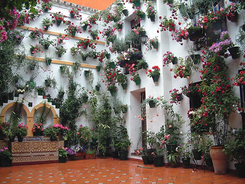 Cordoba patio_2