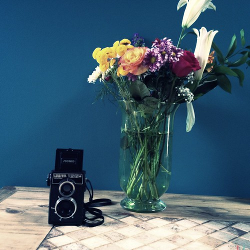 Flowers and a Lubitel by Ennev