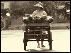 vendeuse de pastèque au Vietnam