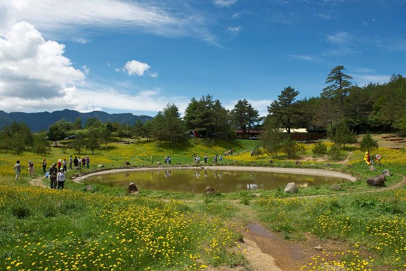 福壽山農場露營區4