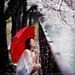 Rainy Sakura by Ilko Allexandroff / イルコ・光の魔術師