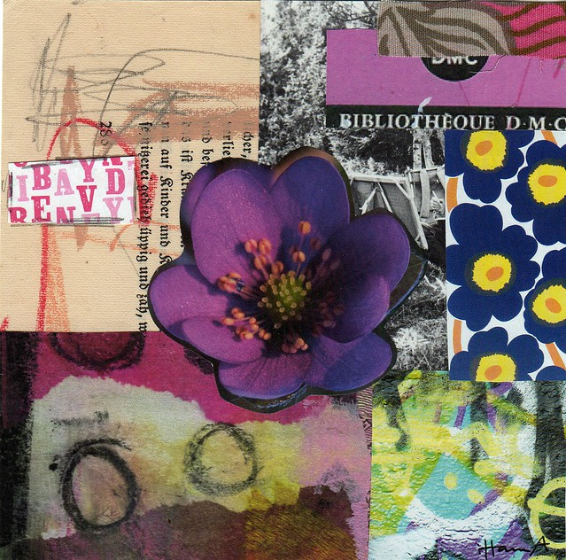 Collage: Anemone at  Dusk